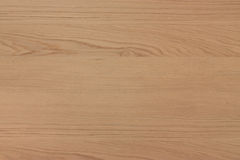 Textura de la madera de roble natural blanca Fotos de archivo