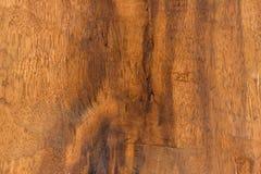 Textura de la madera dura de Brown Imagen de archivo