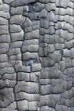 Textura de la madera quemada Fotografía de archivo libre de regalías