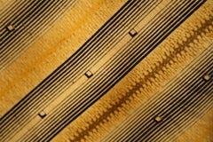 Textura de la materia textil Fotografía de archivo libre de regalías