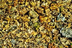 Textura de la ondulación del agua Foto de archivo libre de regalías