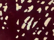 Textura de la pared agrietada vieja de piedra marrón rojo oscuro pintada con la pintura con los puntos blancos, puntos Los antece fotografía de archivo