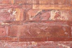 Textura de la pared de la piedra arenisca roja en el fuerte de Agra Imagen de archivo