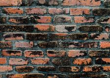 textura de la pared de ladrillo Imagenes de archivo