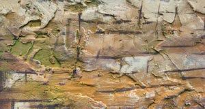Textura de la pared del cemento Fotografía de archivo libre de regalías