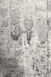 Textura de la pared del vintage Fotos de archivo
