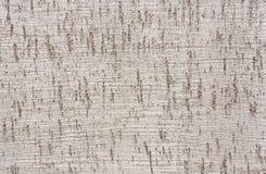 Textura de la pared gris fotos de archivo libres de regalías