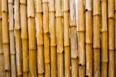Textura de la pared natural de la tala que adorna de bambú Foto de archivo libre de regalías