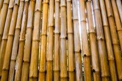 Textura de la pared natural de la tala que adorna de bambú Foto de archivo