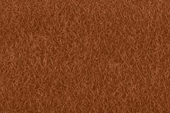 Textura de la peladura de fruta del kiwi con la vista del pelo ilustración del vector