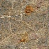 Textura de la piedra Imagenes de archivo
