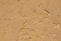 Textura de la piedra arenisca egipcia Fotos de archivo