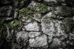 Textura de la piedra y del musgo naturales Fotografía de archivo