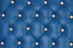 Textura de la piel azul Imagen de archivo libre de regalías