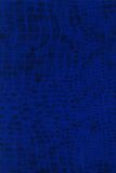 Textura de la piel de Lizzard fotos de archivo