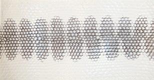 Textura de la piel de serpiente Foto de archivo libre de regalías