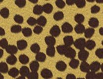 Textura de la piel del guepardo libre illustration