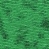 Textura de la piel del reptil Fotografía de archivo libre de regalías