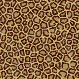 Textura de la piel del tigre inconsútil Fotos de archivo libres de regalías