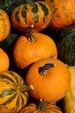 Textura de la pila de diversos anaranjado maduro y verde al Cucurbita rayado anaranjado Pepo de las calabazas Fotografía de archivo