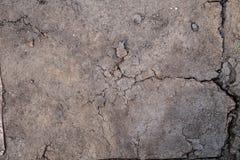 Textura de la placa de madera de la cartulina vieja foto de archivo libre de regalías