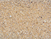 Textura de la playa de la arena Fotografía de archivo