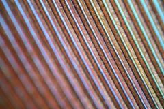 Textura de la pluma debajo del microscopio Imagen de archivo