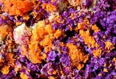 Textura de la pulpa después de la col roja y de las zanahorias de Juicing Fotografía de archivo libre de regalías