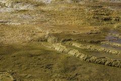 Textura de la roca de Yellowstone Foto de archivo libre de regalías