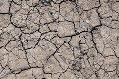Textura de la sequía Imagen de archivo libre de regalías