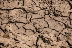 Textura de la suciedad del fango Tierra agrietada seca imagen de archivo libre de regalías