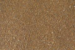 Textura de la superficie de la playa arenosa con las cáscaras machacadas Fotos de archivo libres de regalías