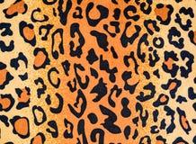 Textura de la tela del cuero del leopardo Imágenes de archivo libres de regalías