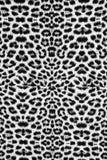 Textura de la tela del leopardo Imagen de archivo