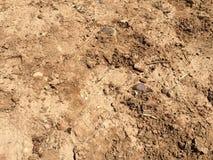 Textura de la tierra Foto de archivo libre de regalías