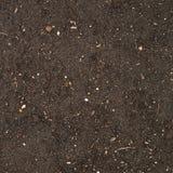 Textura de la tierra con una pequeña adición de piedra Fotos de archivo libres de regalías
