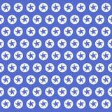 Textura de las flores de la foto de la estrella Foto de archivo