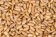 Textura de las semillas de girasol saladas Helianthus fotos de archivo libres de regalías