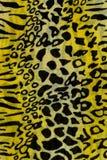 Textura de leopardo listrado da tela da cópia Foto de Stock