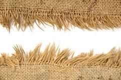 Textura de linho natural clara Imagens de Stock