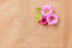 Textura de lino con las flores Foto de archivo libre de regalías