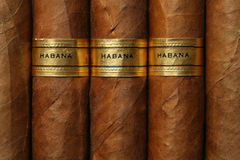 Textura de los cigarros de La Habana Fotografía de archivo libre de regalías