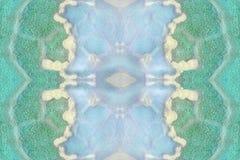 Textura de los depósitos de la sal en agua El mar muerto se seca, el salvamento de las aguas de mar imágenes de archivo libres de regalías