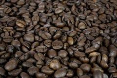 Textura de los granos de café Imagen de archivo