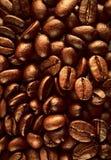 Textura de los granos de café Imágenes de archivo libres de regalías