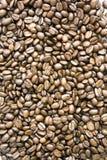 Textura de los granos de café Foto de archivo