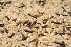 Textura de los granos mezclados del arroz Fotos de archivo libres de regalías