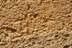 Textura de los ladrillos ásperos hechos de crustáceos Foto de archivo libre de regalías