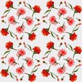 Textura de los lirios rosados y rojos, postal elegante Foto de archivo
