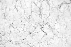 Textura de mármol blanca con las porciones de poner en contraste intrépido que vetean Imagenes de archivo